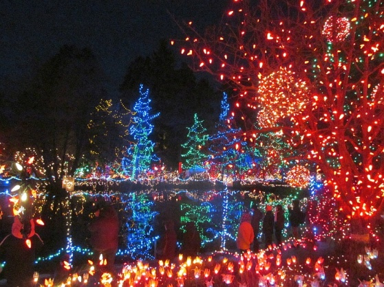 vandusen lights by the water  2012