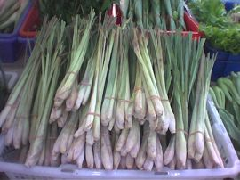 Lemongrass (photo Wikipedia Commons courtesy Hakcipta Mohamed Yosri)