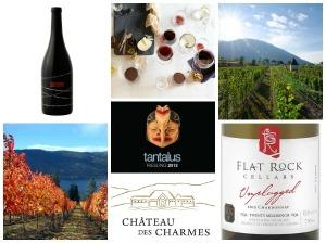 fall wine cellar collage