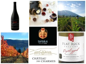 fall wine cellar collage